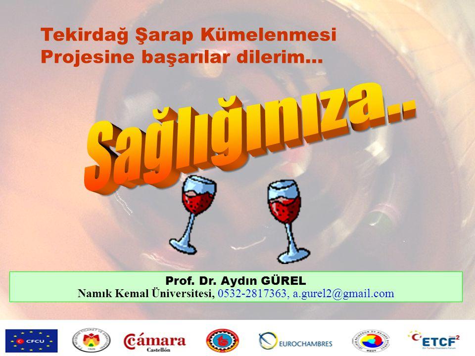 Namık Kemal Üniversitesi, 0532-2817363, a.gurel2@gmail.com