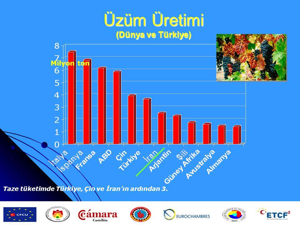 Üzüm Üretimi (Dünya ve Türkiye)