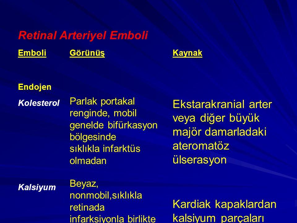 Retinal Arteriyel Emboli