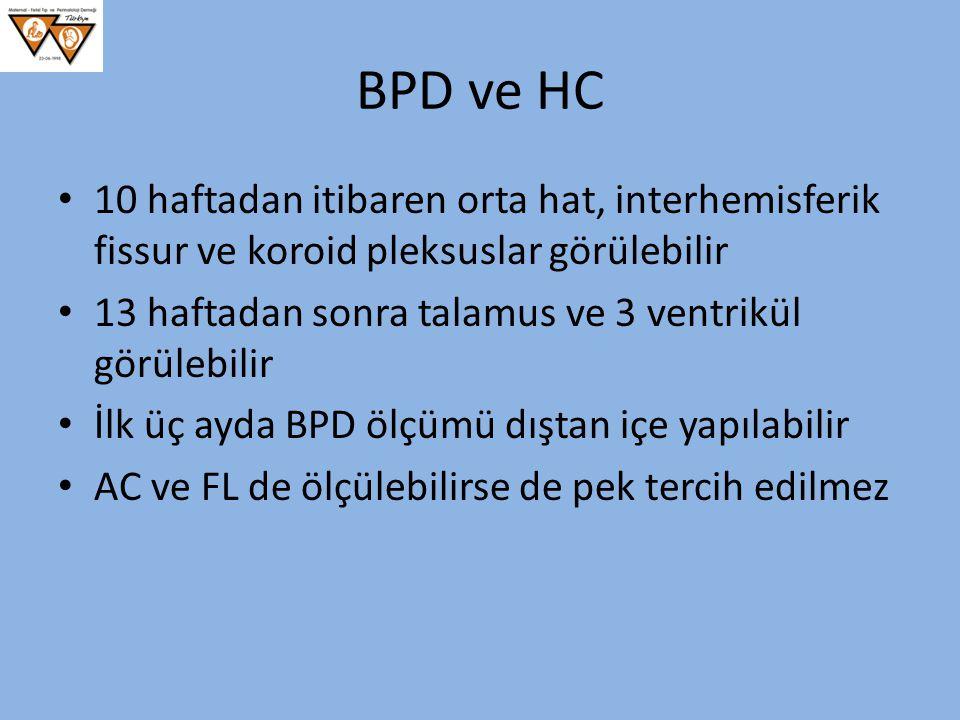 BPD ve HC 10 haftadan itibaren orta hat, interhemisferik fissur ve koroid pleksuslar görülebilir.