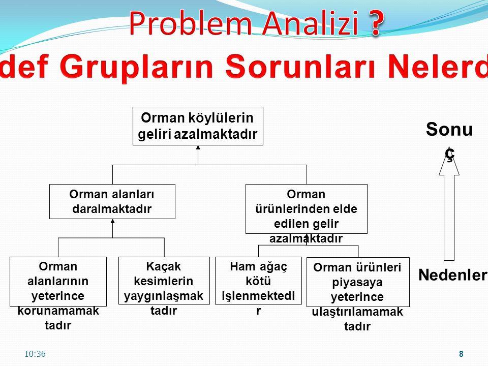 Problem Analizi Hedef Grupların Sorunları Nelerdir Sonuç Nedenler