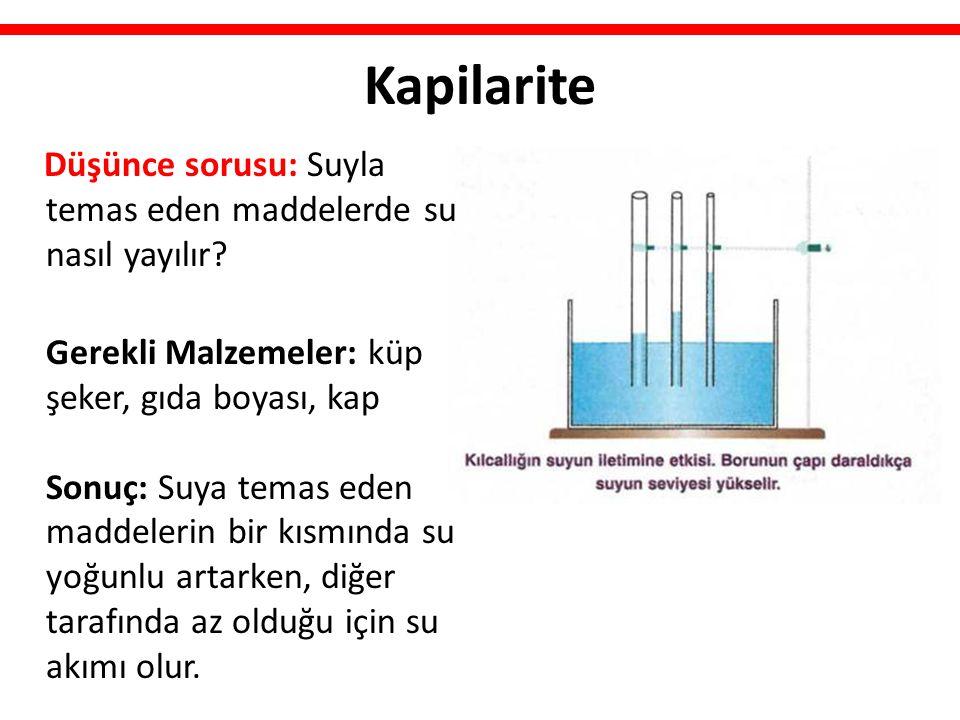 Kapilarite