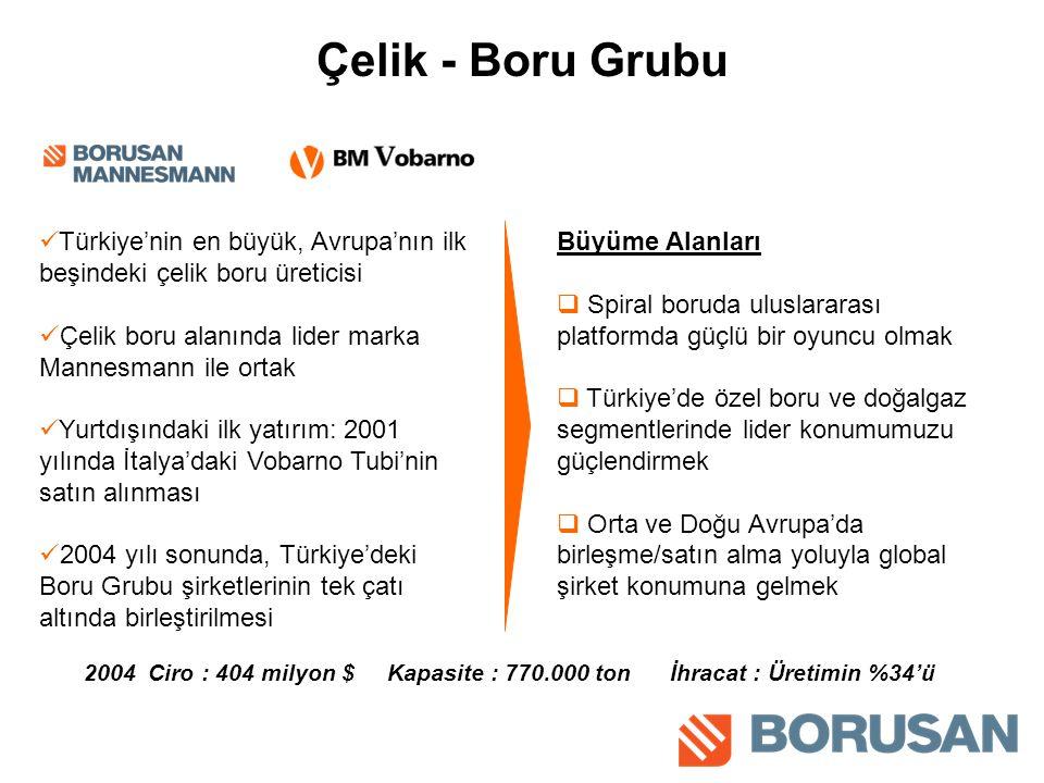 Çelik - Boru Grubu Türkiye'nin en büyük, Avrupa'nın ilk beşindeki çelik boru üreticisi. Çelik boru alanında lider marka Mannesmann ile ortak.