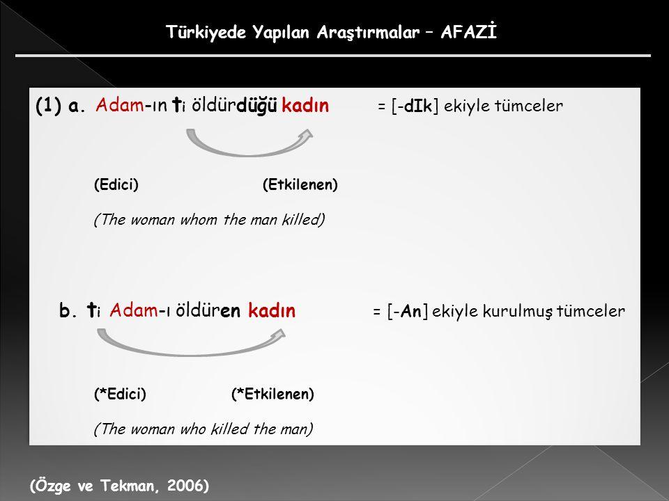 Türkiyede Yapılan Araştırmalar – AFAZİ