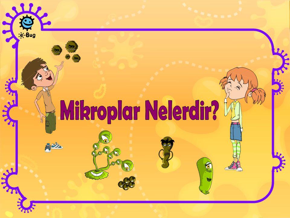 Mikroplar Nelerdir