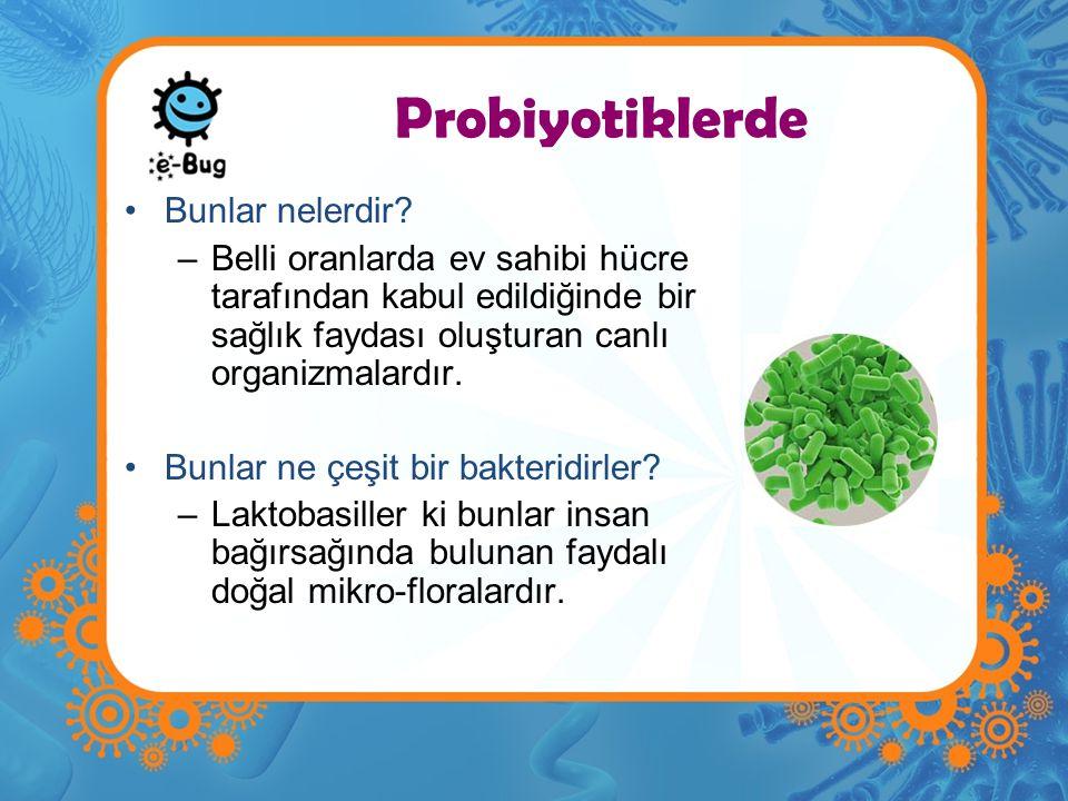 Probiyotiklerde Bunlar nelerdir