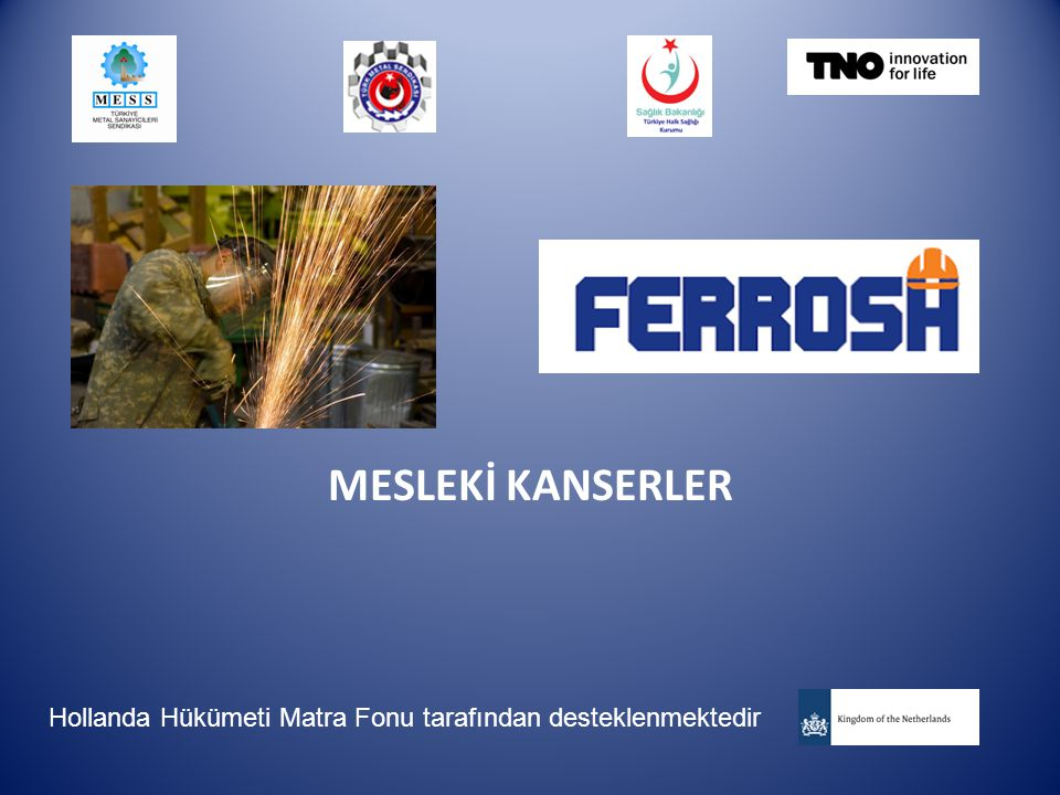 MESLEKİ KANSERLER Hollanda Hükümeti Matra Fonu tarafından desteklenmektedir