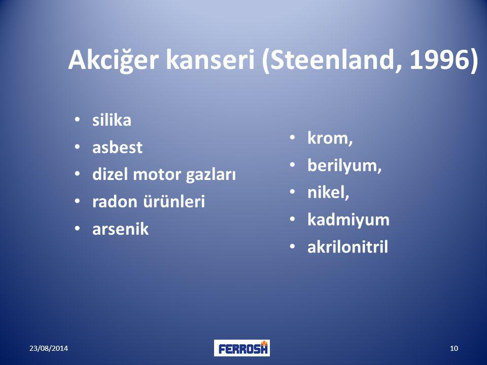 Akciğer kanseri (Steenland, 1996)