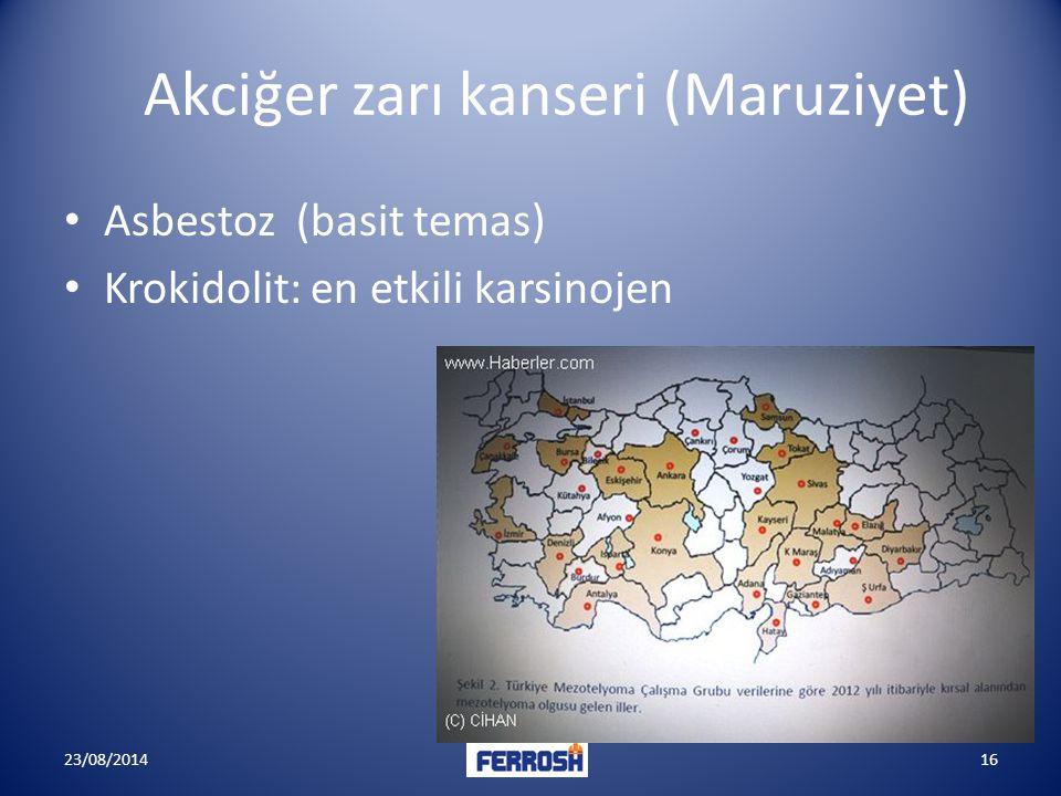 Akciğer zarı kanseri (Maruziyet)