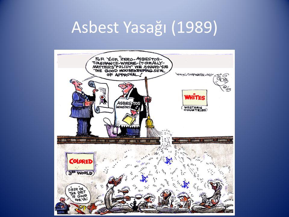 Asbest Yasağı (1989)