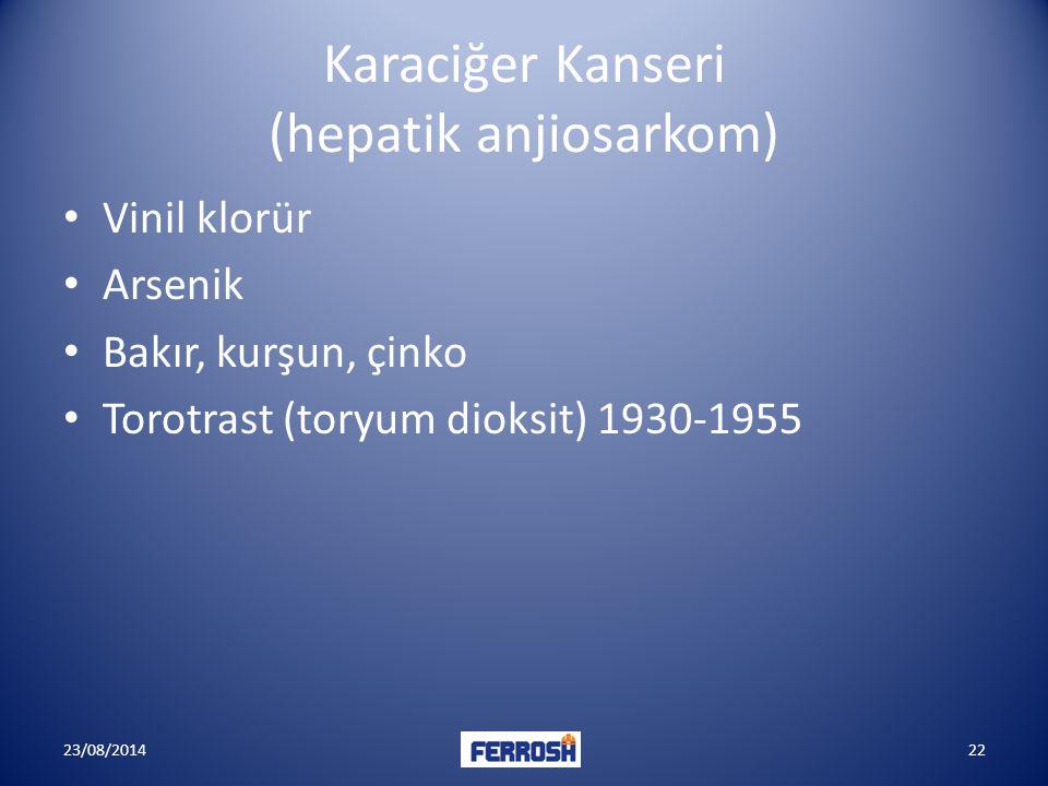 Karaciğer Kanseri (hepatik anjiosarkom)