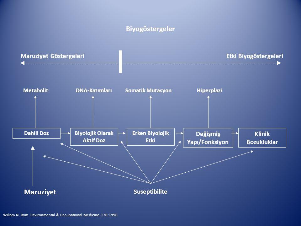 Biyolojik Olarak Aktif Doz Değişmiş Yapı/Fonksiyon