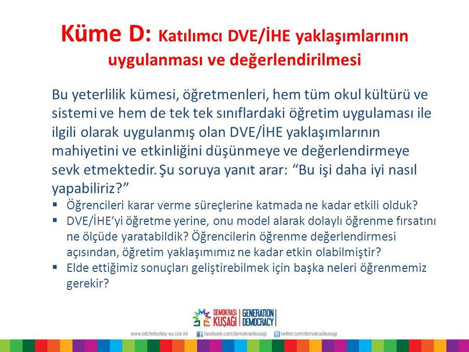 Küme D: Katılımcı DVE/İHE yaklaşımlarının uygulanması ve değerlendirilmesi