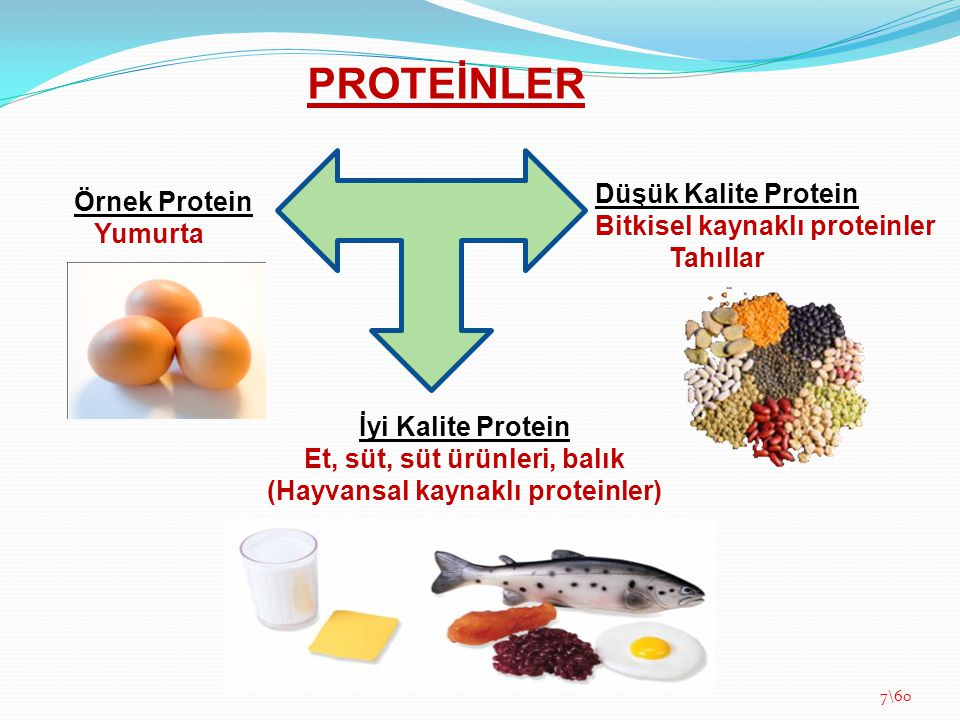 Et, süt, süt ürünleri, balık (Hayvansal kaynaklı proteinler)
