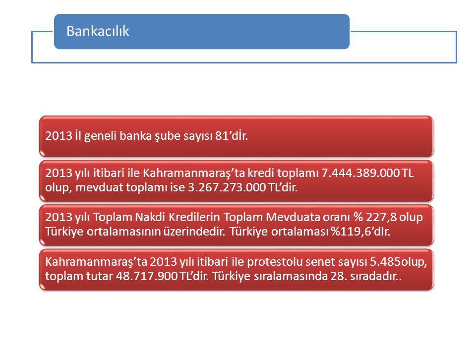 Bankacılık 2013 İl geneli banka şube sayısı 81'dİr.