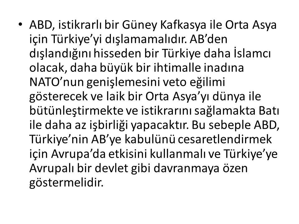 ABD, istikrarlı bir Güney Kafkasya ile Orta Asya için Türkiye'yi dışlamamalıdır.