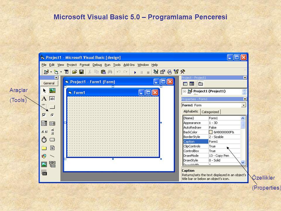 Microsoft Visual Basic 5.0 – Programlama Penceresi