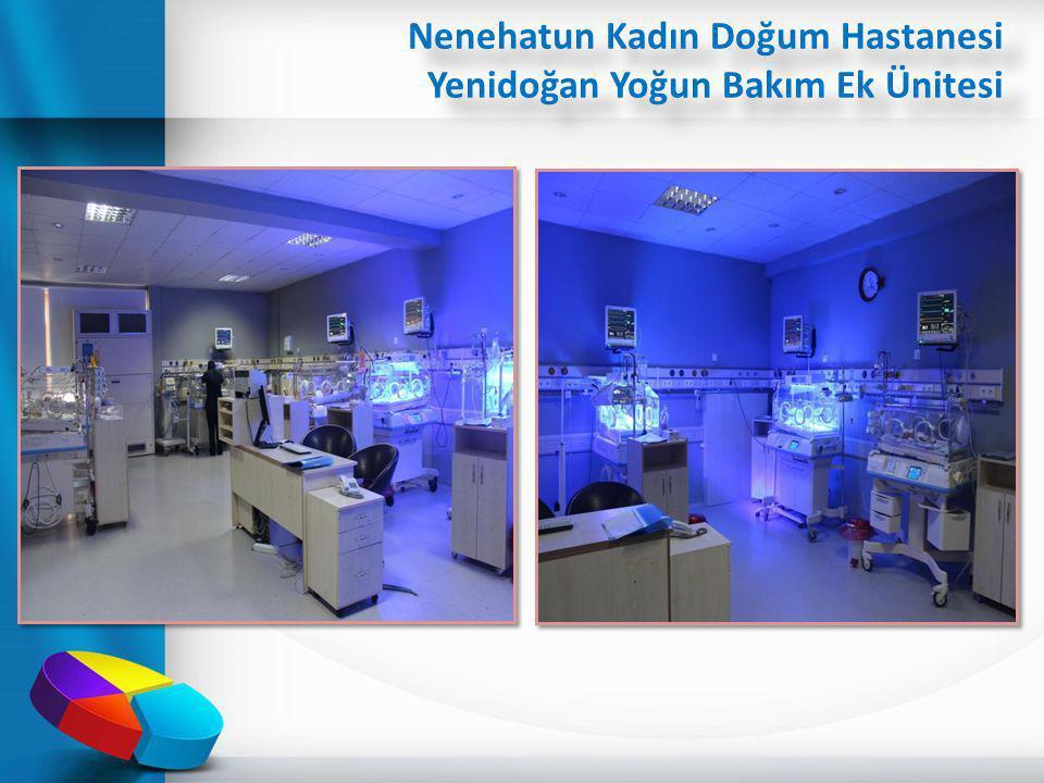 Nenehatun Kadın Doğum Hastanesi Yenidoğan Yoğun Bakım Ek Ünitesi