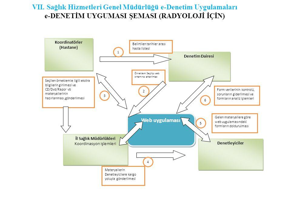 VII. Sağlık Hizmetleri Genel Müdürlüğü e-Denetim Uygulamaları