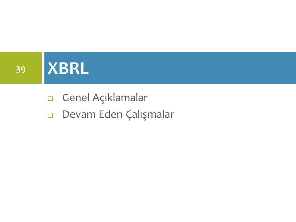 XBRL Genel Açıklamalar Devam Eden Çalışmalar