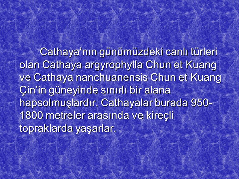 Cathaya'nın günümüzdeki canlı türleri olan Cathaya argyrophylla Chun et Kuang ve Cathaya nanchuanensis Chun et Kuang Çin'in güneyinde sınırlı bir alana hapsolmuşlardır.