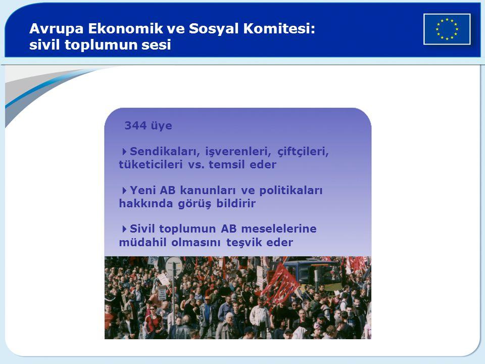 Avrupa Ekonomik ve Sosyal Komitesi: sivil toplumun sesi