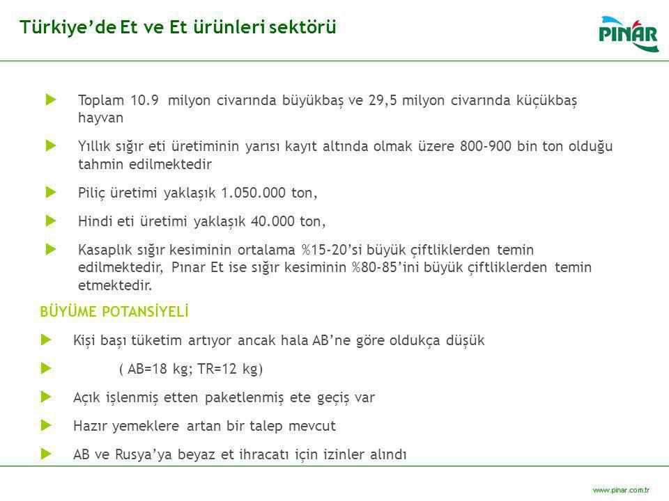 Türkiye'de Et ve Et ürünleri sektörü