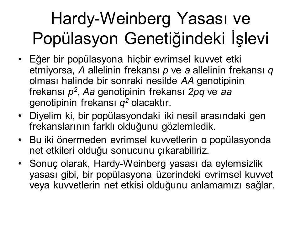 Hardy-Weinberg Yasası ve Popülasyon Genetiğindeki İşlevi