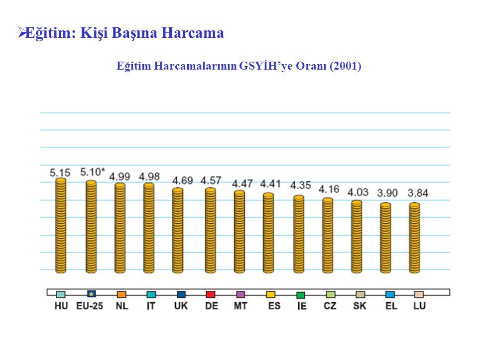 Eğitim Harcamalarının GSYİH'ye Oranı (2001)