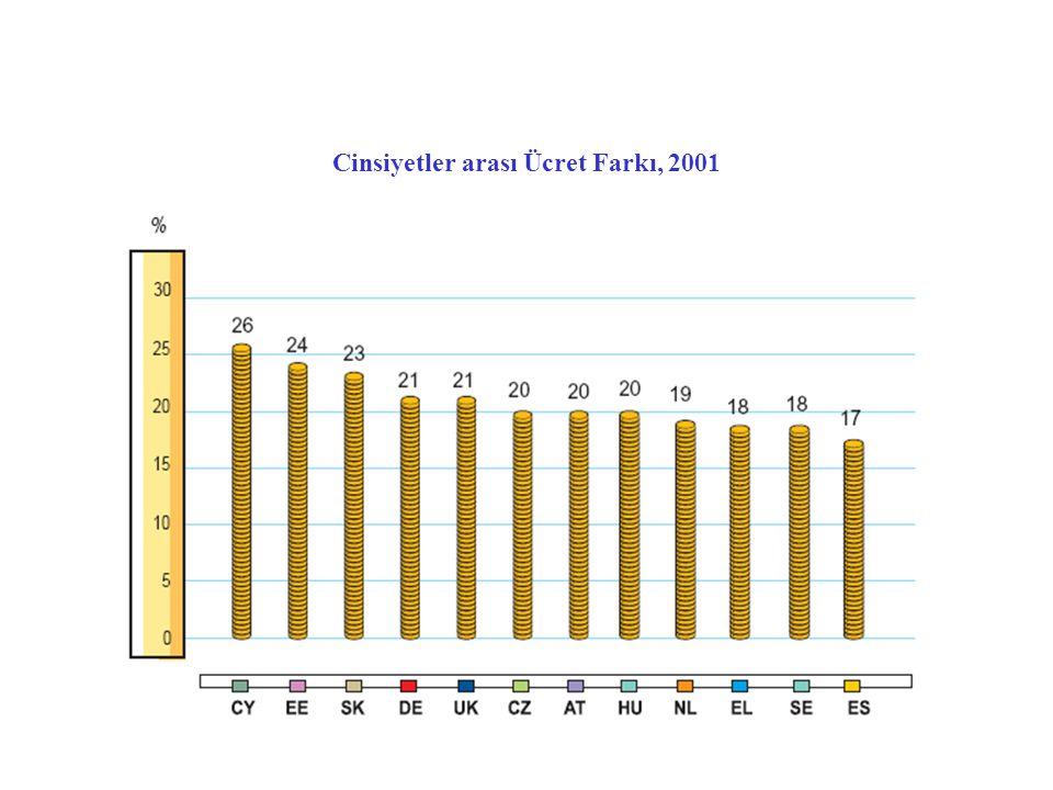 Cinsiyetler arası Ücret Farkı, 2001
