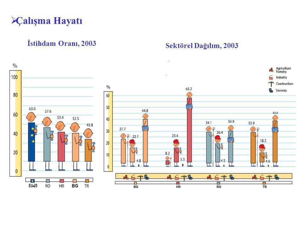 Çalışma Hayatı İstihdam Oranı, 2003 Sektörel Dağılım, 2003