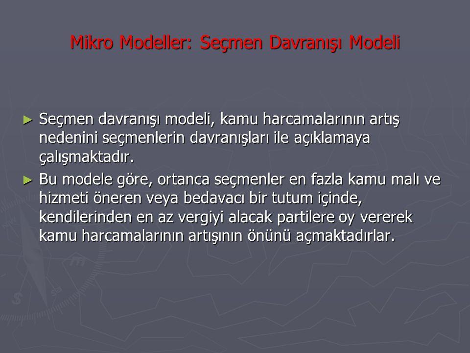 Mikro Modeller: Seçmen Davranışı Modeli