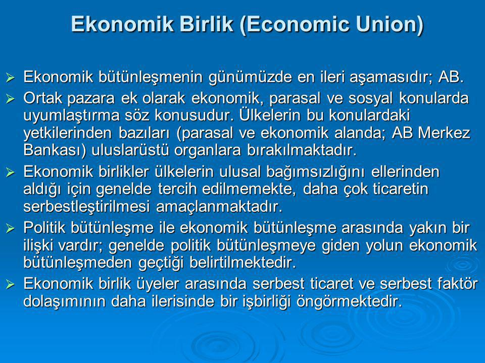 Ekonomik Birlik (Economic Union)