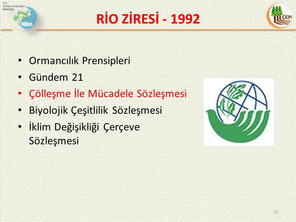RİO ZİRESİ - 1992 Ormancılık Prensipleri Gündem 21