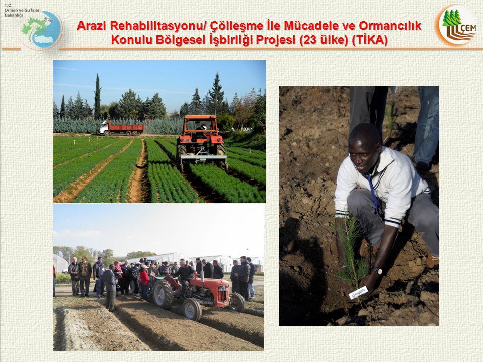 Arazi Rehabilitasyonu/ Çölleşme İle Mücadele ve Ormancılık Konulu Bölgesel İşbirliği Projesi (23 ülke) (TİKA)