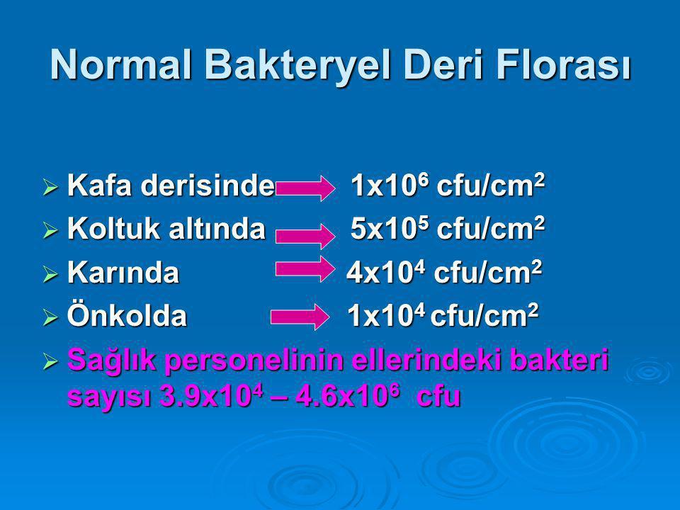 Normal Bakteryel Deri Florası