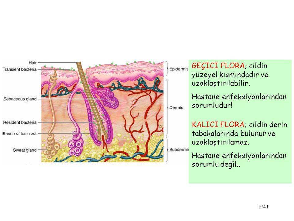 GEÇİCİ FLORA; cildin yüzeyel kısmındadır ve uzaklaştırılabilir.