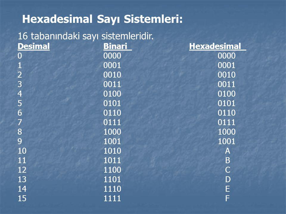 Hexadesimal Sayı Sistemleri: