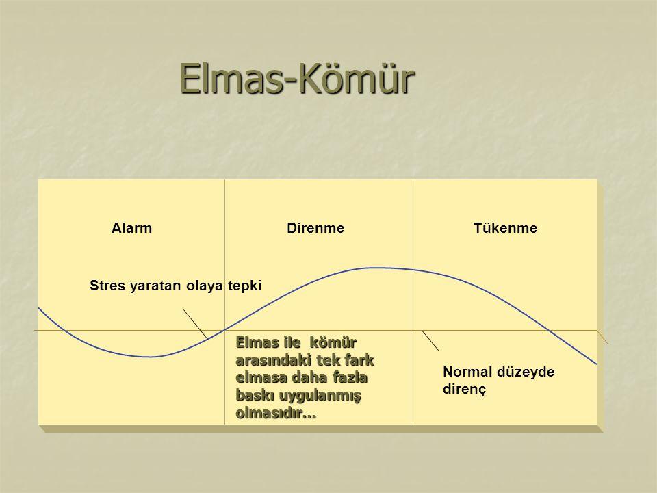 Elmas-Kömür Normal düzeyde direnç Stres yaratan olaya tepki Alarm
