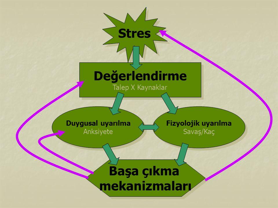 Stres Değerlendirme Başa çıkma mekanizmaları