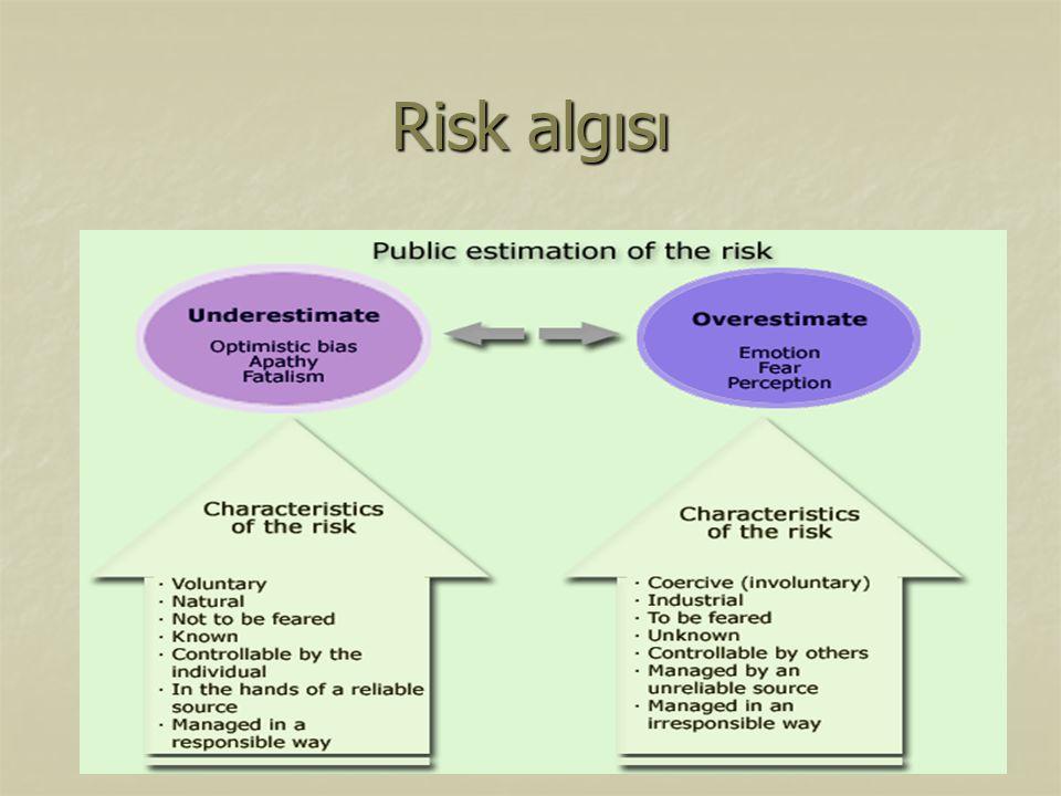 Risk algısı