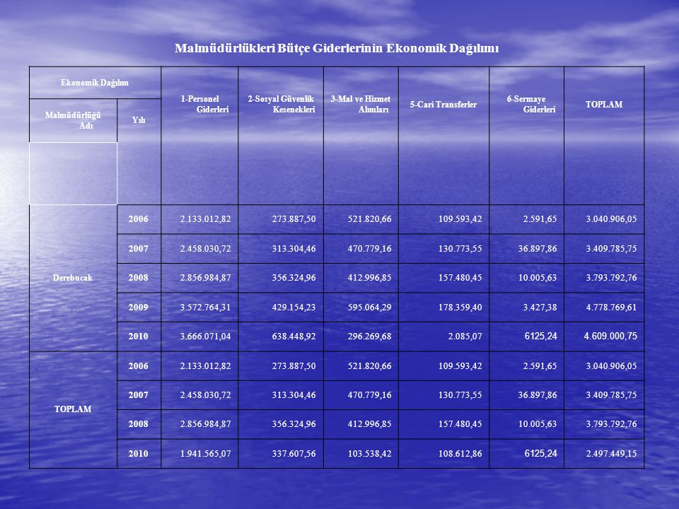 Malmüdürlükleri Bütçe Giderlerinin Ekonomik Dağılımı