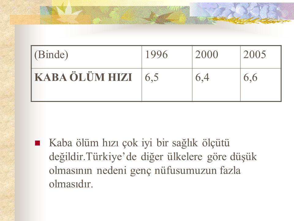 (Binde) 1996. 2000. 2005. KABA ÖLÜM HIZI. 6,5. 6,4. 6,6.