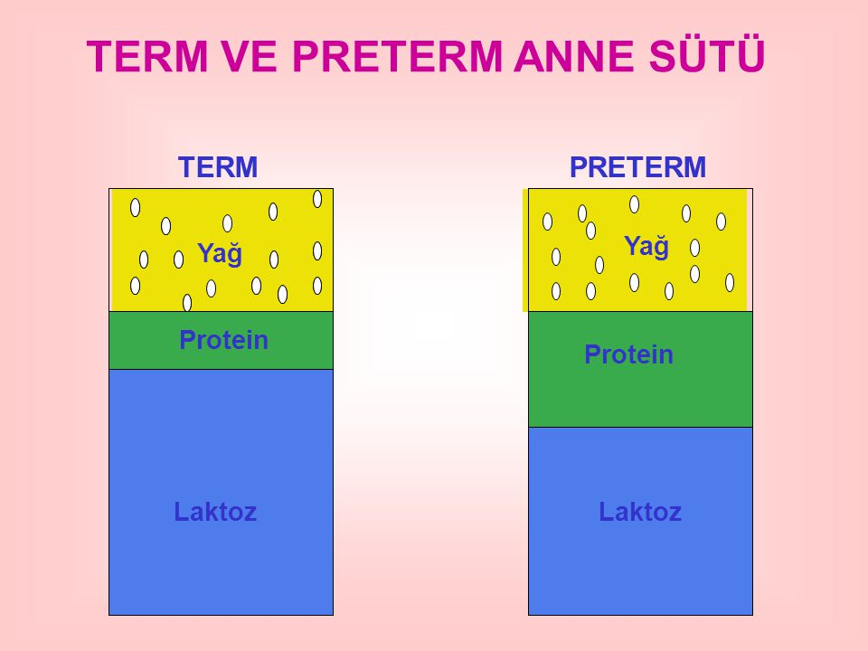 TERM VE PRETERM ANNE SÜTÜ