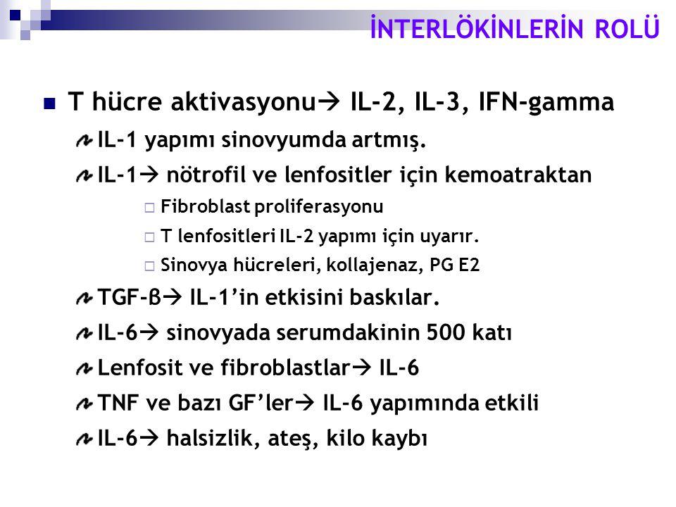 T hücre aktivasyonu IL-2, IL-3, IFN-gamma
