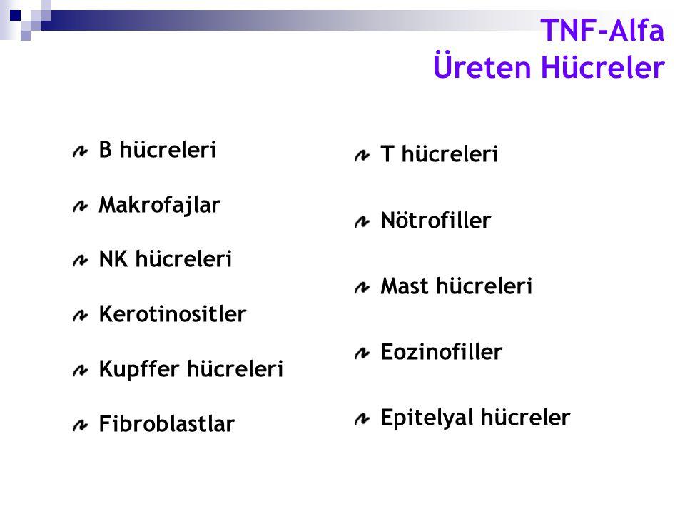 TNF-Alfa Üreten Hücreler