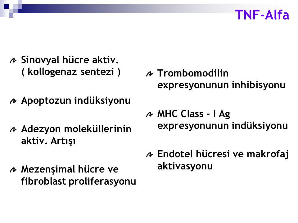 TNF-Alfa Sinovyal hücre aktiv. ( kollogenaz sentezi )