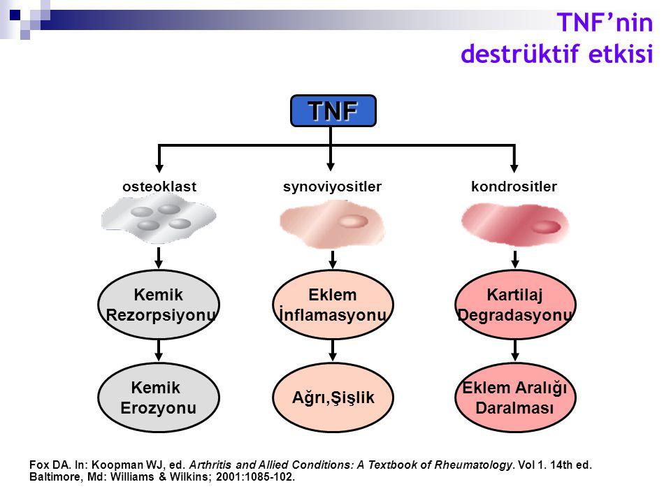 TNF'nin destrüktif etkisi