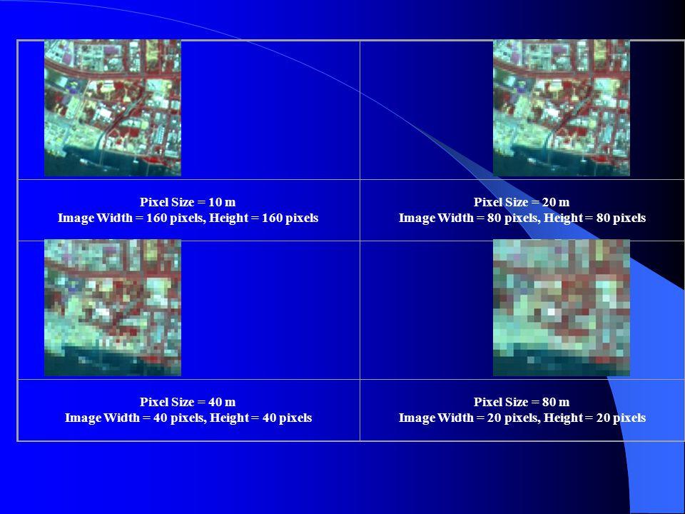 Pixel Size = 10 m Image Width = 160 pixels, Height = 160 pixels