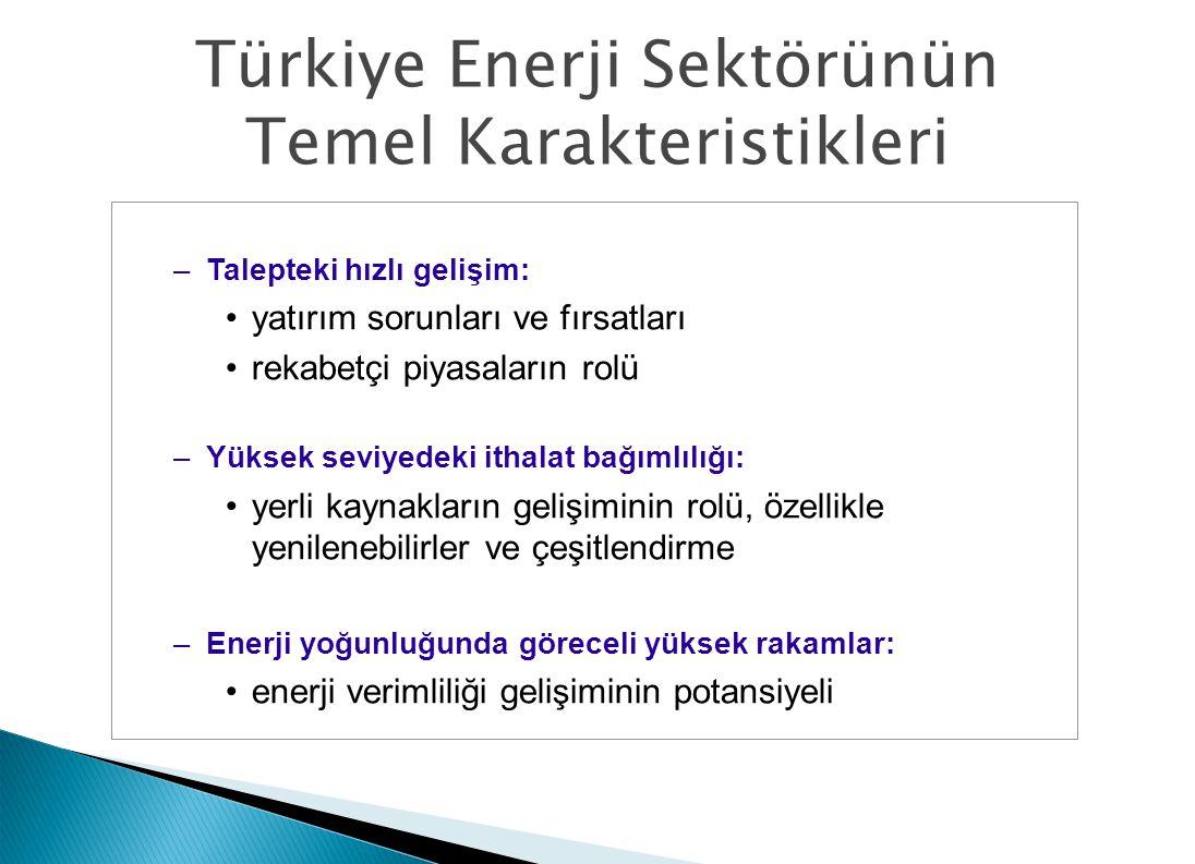 Türkiye Enerji Sektörünün Temel Karakteristikleri